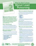 About Lead Poisoning